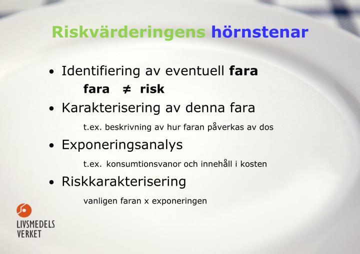 Riskvärderingens
