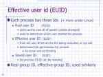 effective user id euid