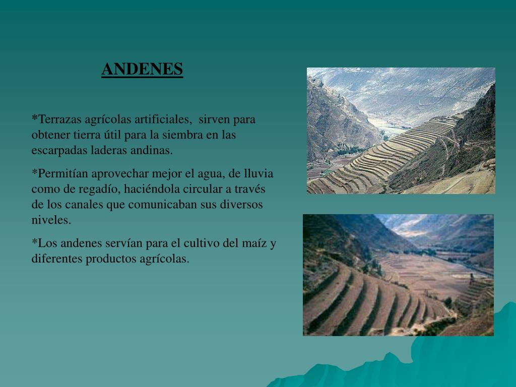 Ppt Incas Powerpoint Presentation Free Download Id 6324343