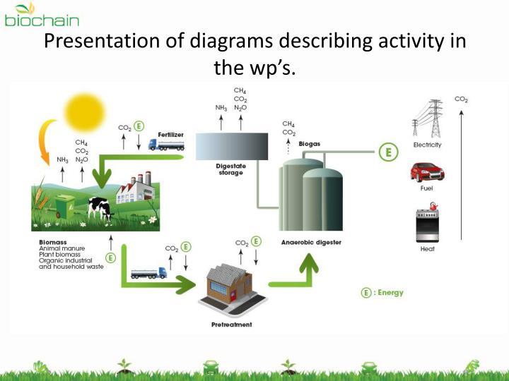 Presentation of diagrams describing activity in the