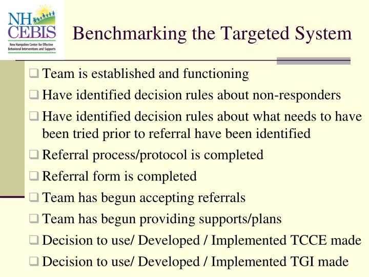 Benchmarking the Targeted System