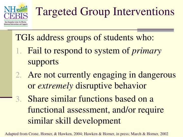 Targeted Group Interventions