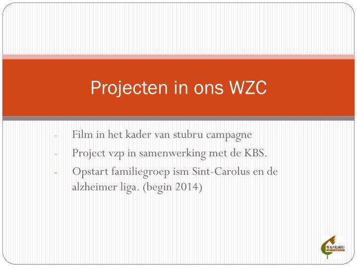 Projecten in ons WZC