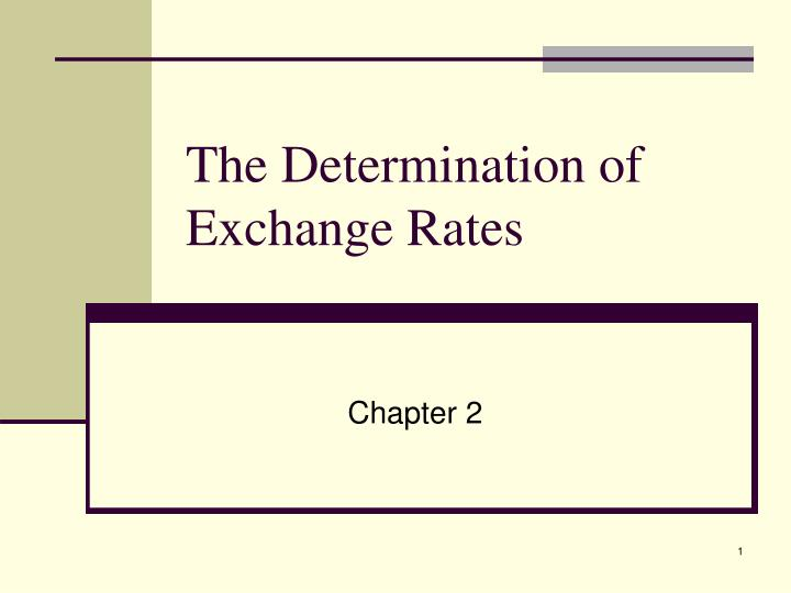 the determination of exchange rates n.