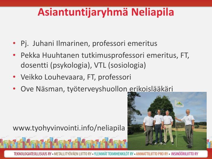 Asiantuntijaryhmä Neliapila