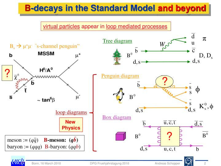 B decays in the standard model