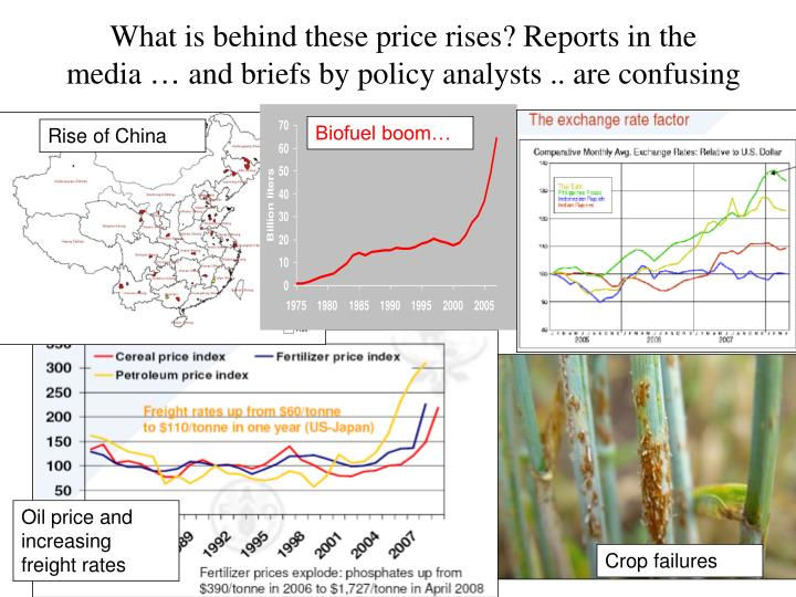 What is behind these price rises reports in the media and briefs by policy analysts are confusing