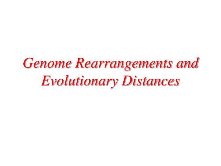 Genome Rearrangements and Evolutionary Distances