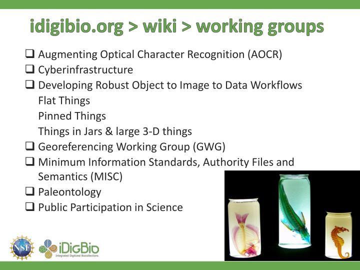 idigibio.org > wiki > working groups
