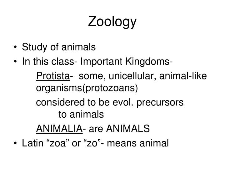 Zoology1
