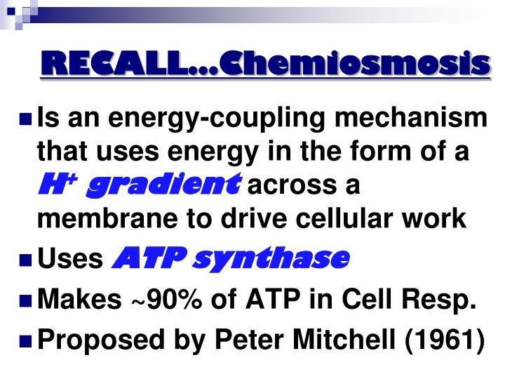 RECALL…Chemiosmosis