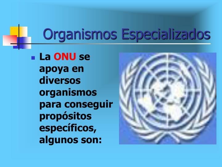 Organismos Especializados