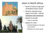 islam in north africa