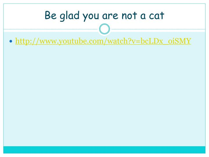 Be glad you are not a cat
