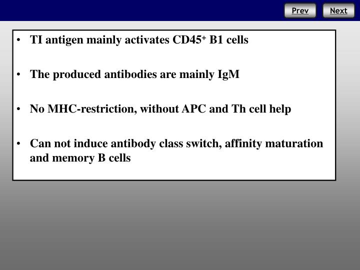 TI antigen mainly activates CD45