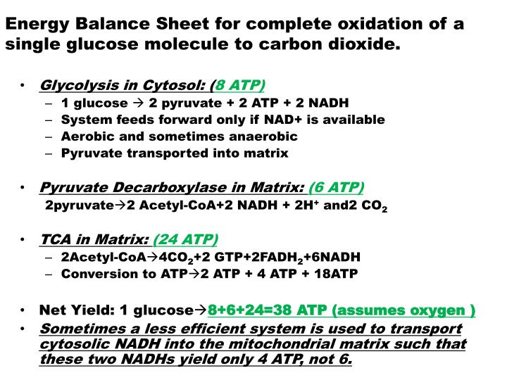 Energy Balance Sheet for complete oxidation of a single glucose molecule to carbon dioxide.