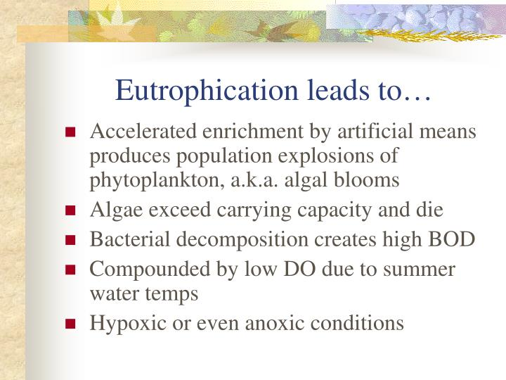 Eutrophication leads to…