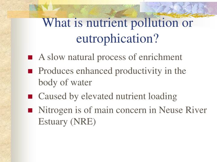 What is nutrient pollution or eutrophication?