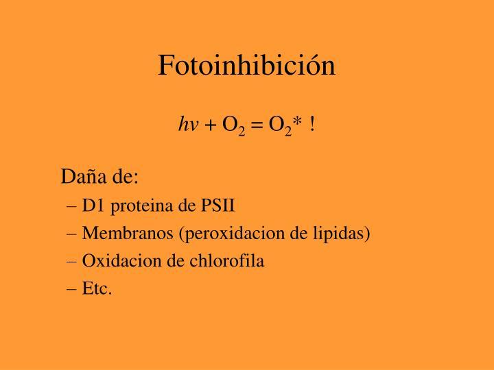 Fotoinhibición