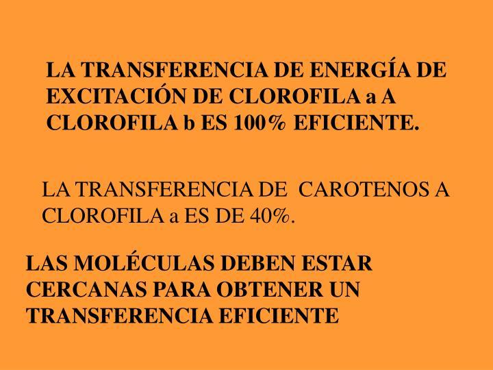 LA TRANSFERENCIA DE ENERGÍA DE EXCITACIÓN DE CLOROFILA a A CLOROFILA b ES 100% EFICIENTE.
