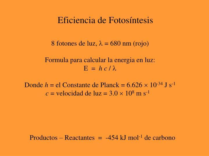 Eficiencia de Fotosíntesis