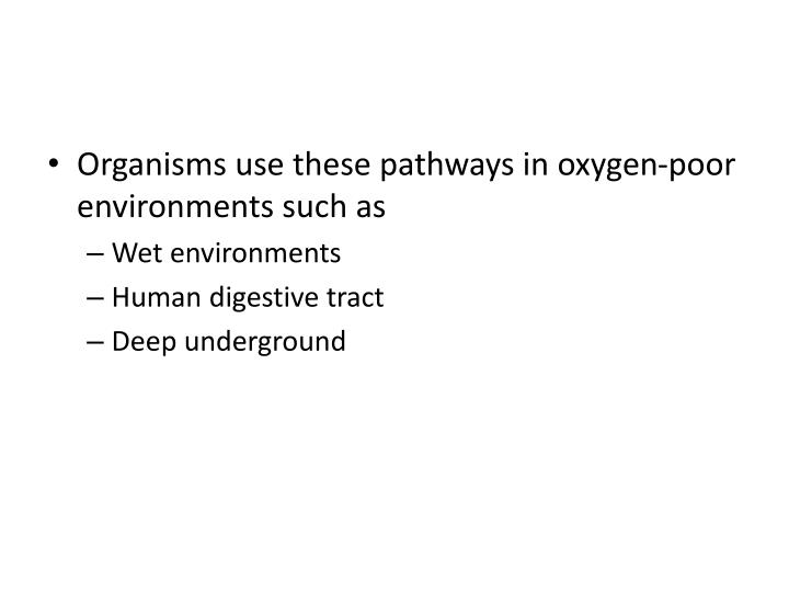 Organisms use these pathways in oxygen-poor