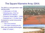 the square kilometre array ska