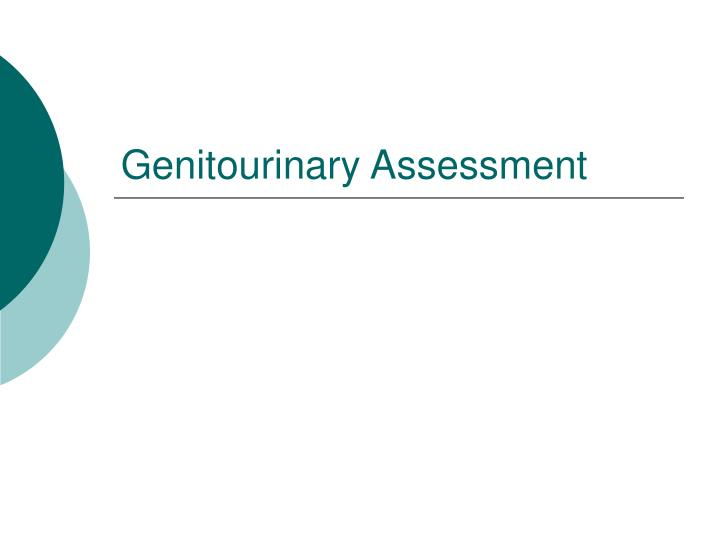 genitourinary assessment n.