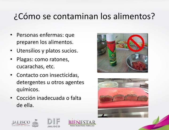 Ppt manejo higi nico de los alimentos powerpoint - Como evitar los ratones ...