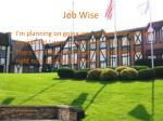 job wise