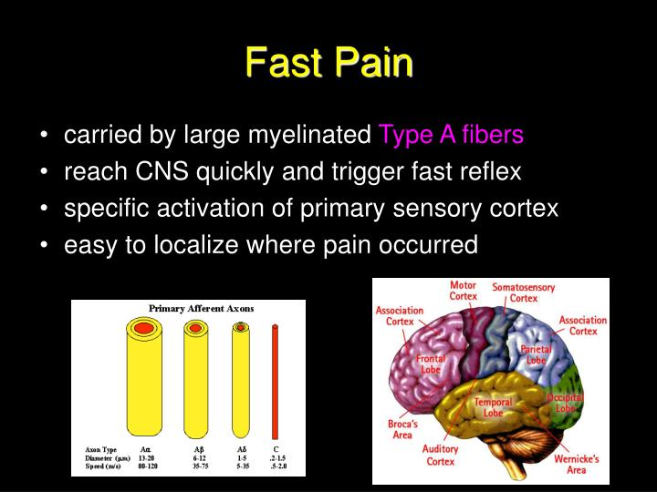 Fast Pain