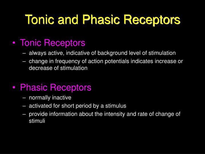 Tonic and Phasic Receptors