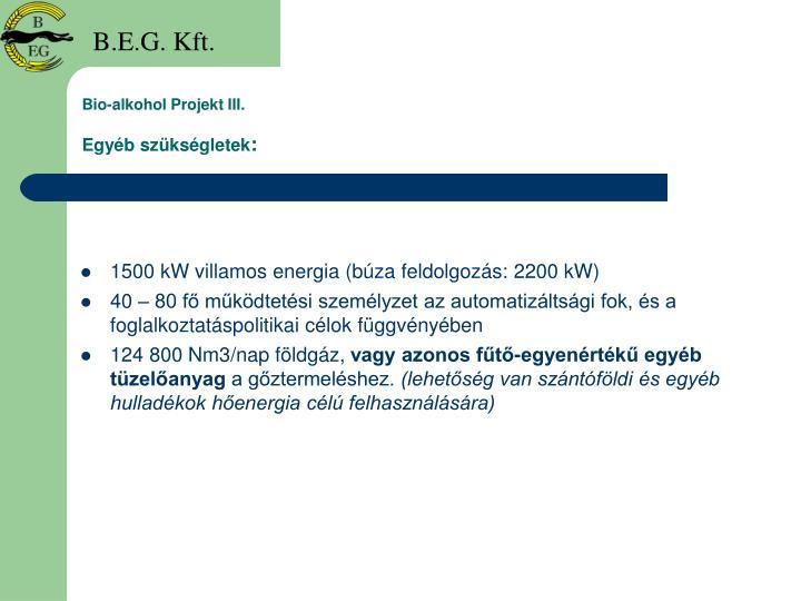 Bio-alkohol Projekt III.