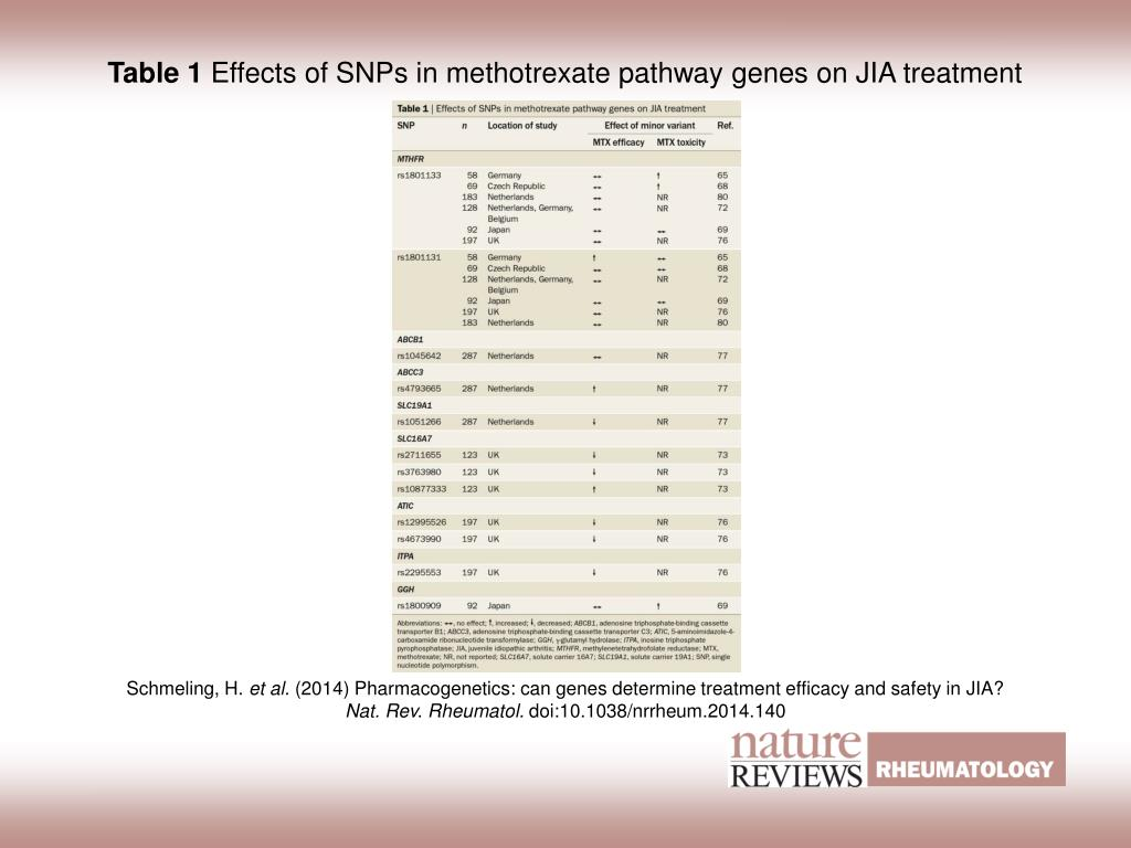 Table H Et H ppt - table 1 effects of snps in methotrexate pathway genes