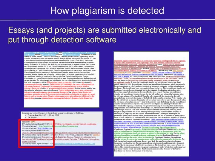 How plagiarism is detected
