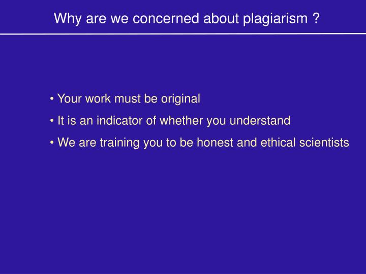 Why are we concerned about plagiarism ?