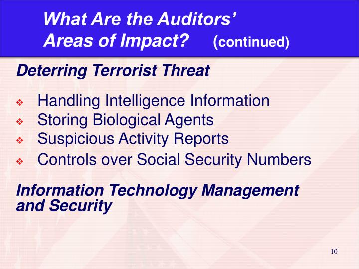 What Are the Auditors'