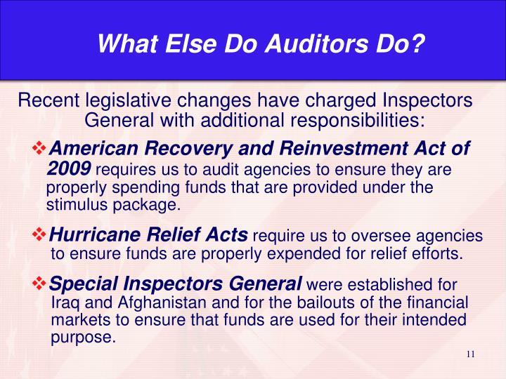 What Else Do Auditors Do?