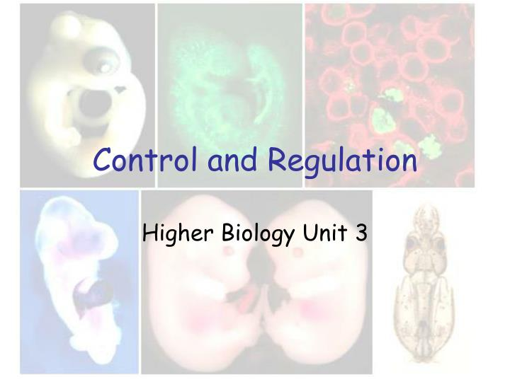 control and regulation n.