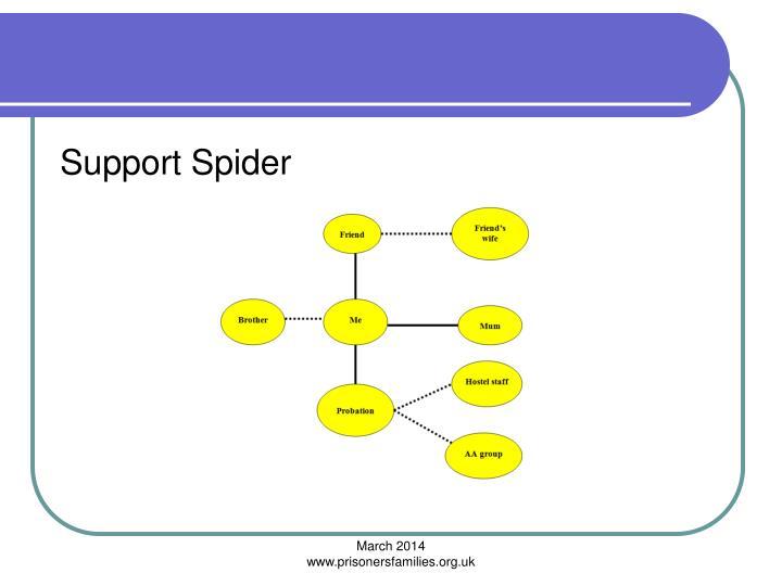 Support Spider