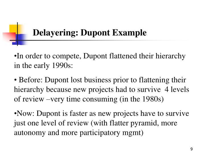 Delayering: Dupont Example