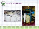 acopio y procesamiento1