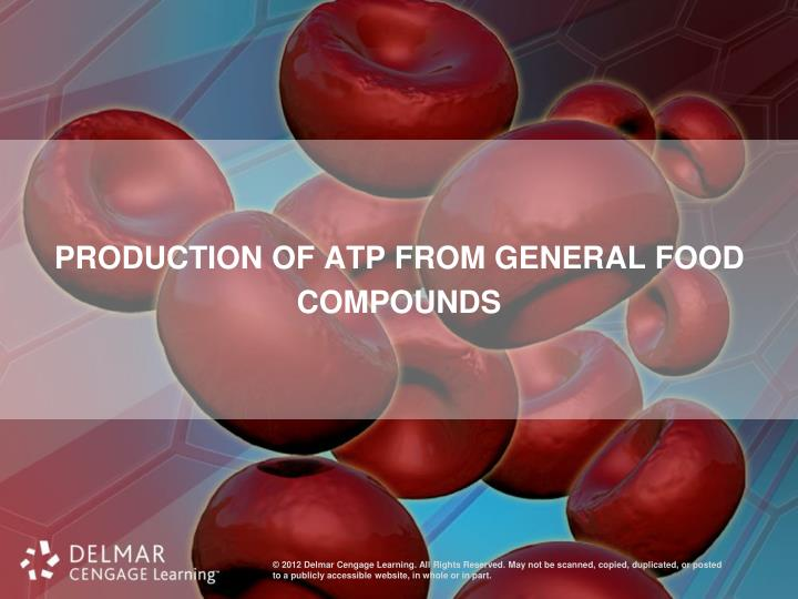 Production of ATP from General Food Compounds