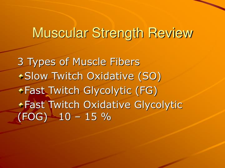 muscular strength review n.