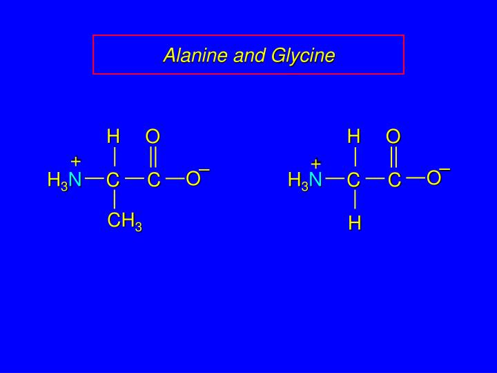Alanine and glycine