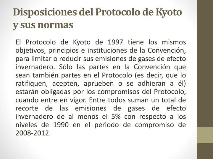 Disposiciones del Protocolo de