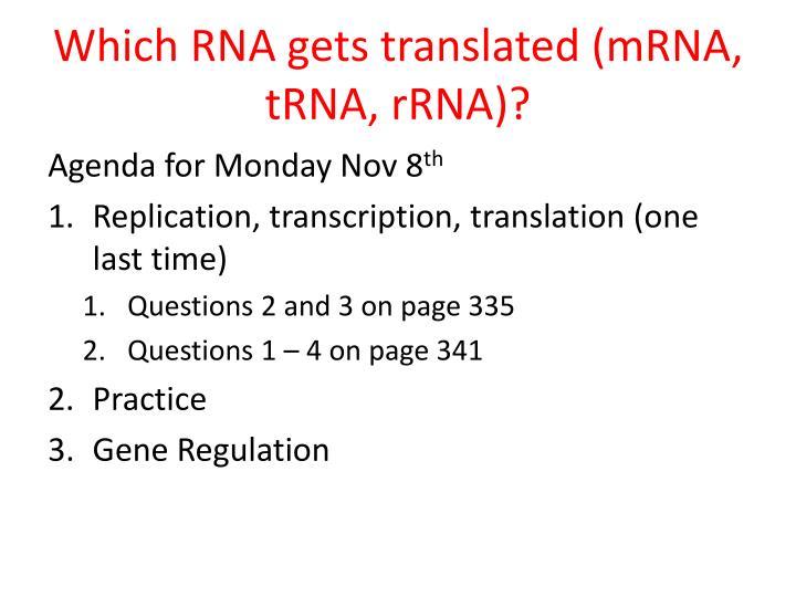 Which RNA gets translated (mRNA, tRNA, rRNA)?
