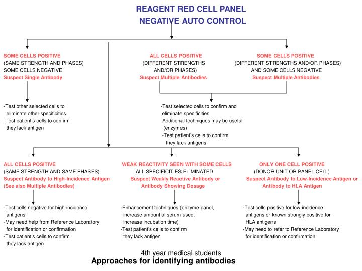 REAGENT RED CELL PANEL