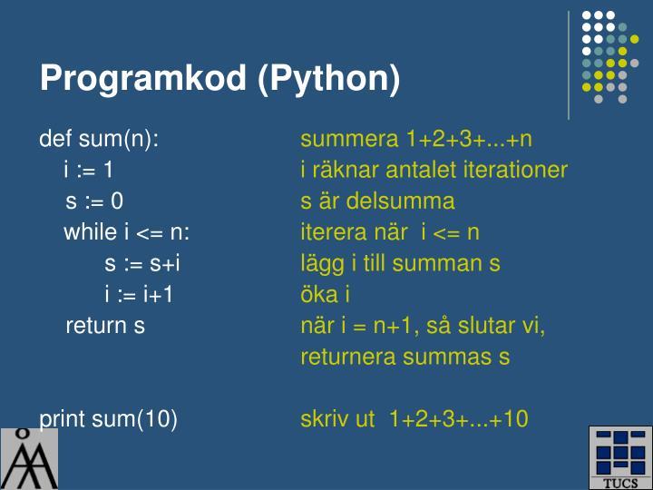 Programkod (Python)