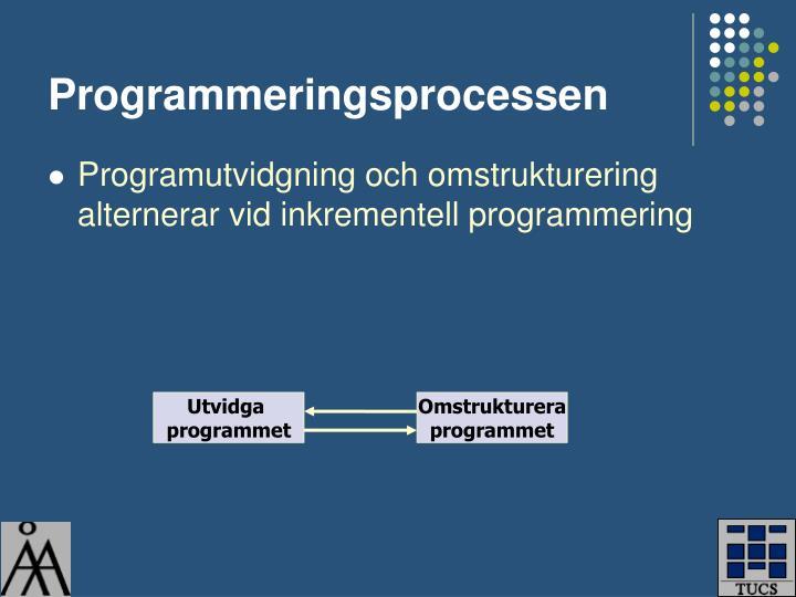Programmeringsprocessen